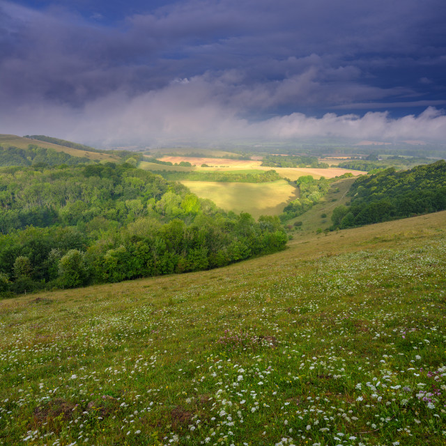 """""""Mist morning in the Meon Valley, South Downs National Park"""" stock image"""