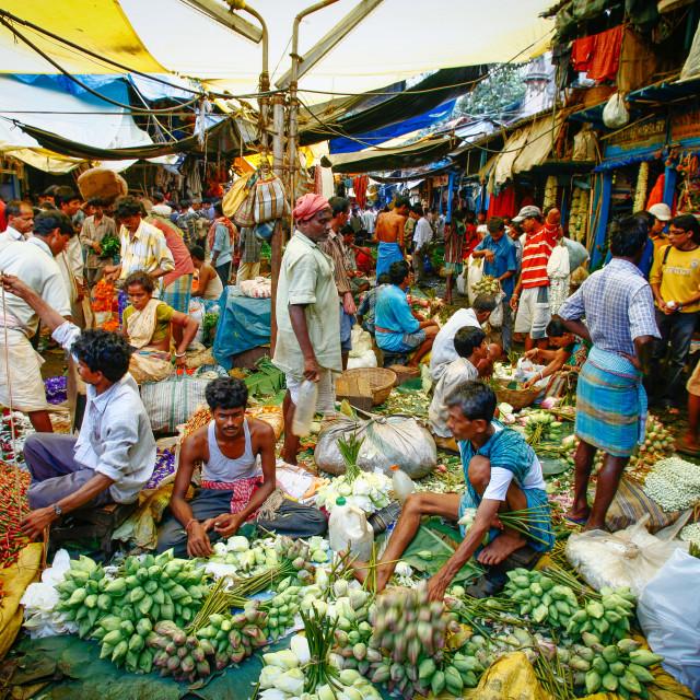 """""""Reportage und Street Photography in Kolkata (Kalkutta, Calcutta)"""" stock image"""