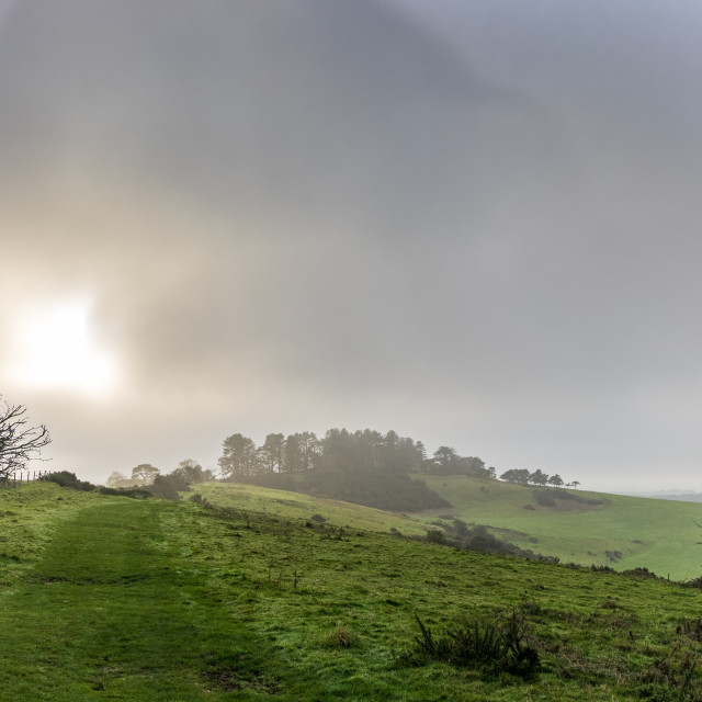 """Sunlight in the fog, Penbury Knoll"" stock image"