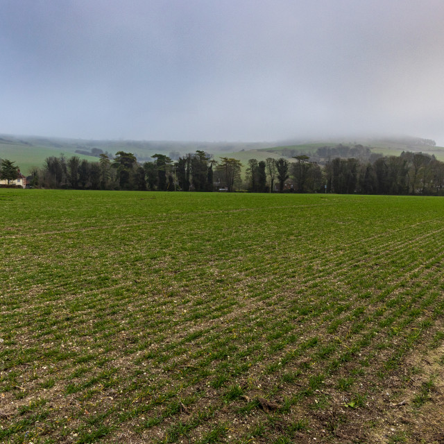 """Misty hills and farmland, Cranborne Chase"" stock image"
