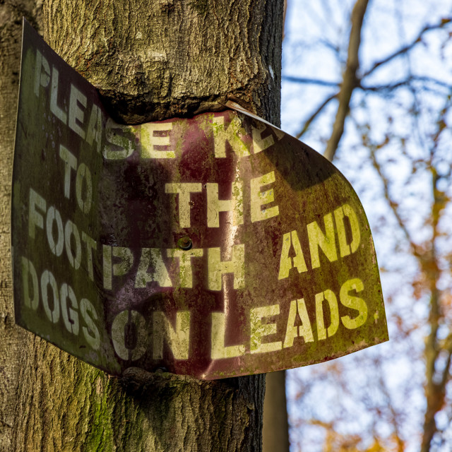 """""""Warning sign on a woodland footpath"""" stock image"""