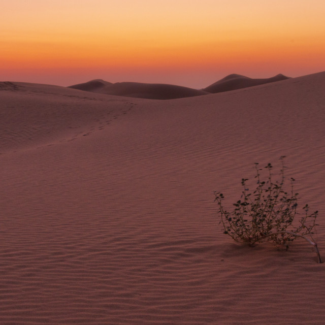 """""""Sunset over the dunes"""" stock image"""