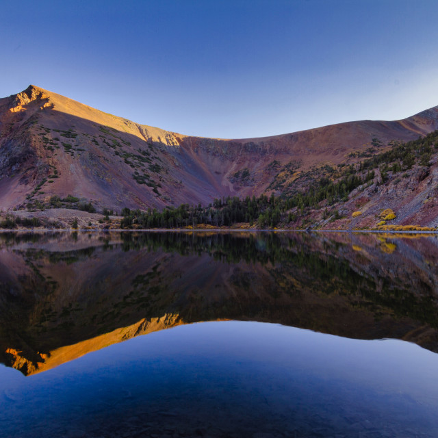"""""""Autumn reflection of a vibrantly colored mountain"""" stock image"""