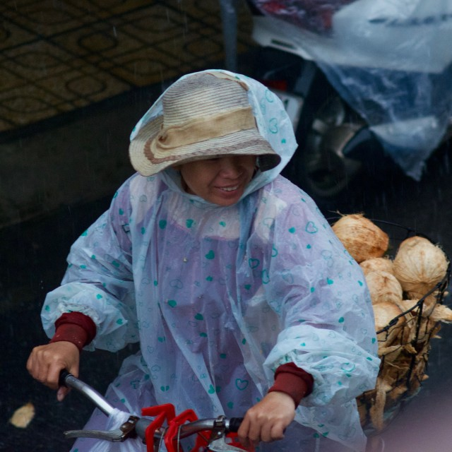 """Coconut seller"" stock image"