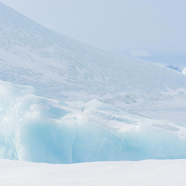 """""""Icebergs"""" stock image"""