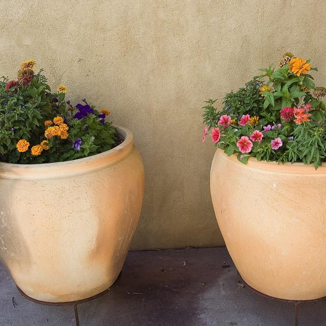 """Flower pots"" stock image"