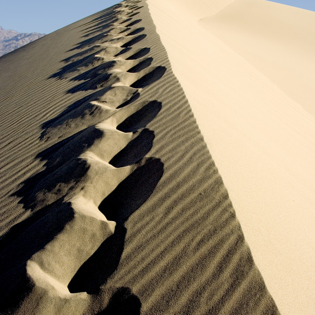 """""""Foot prints in the sand dunes"""" stock image"""