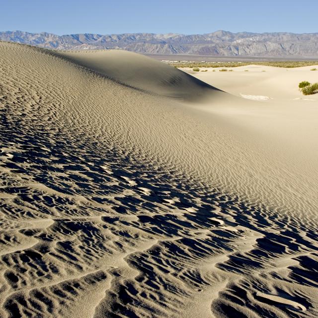 """Sand dunes 4"" stock image"
