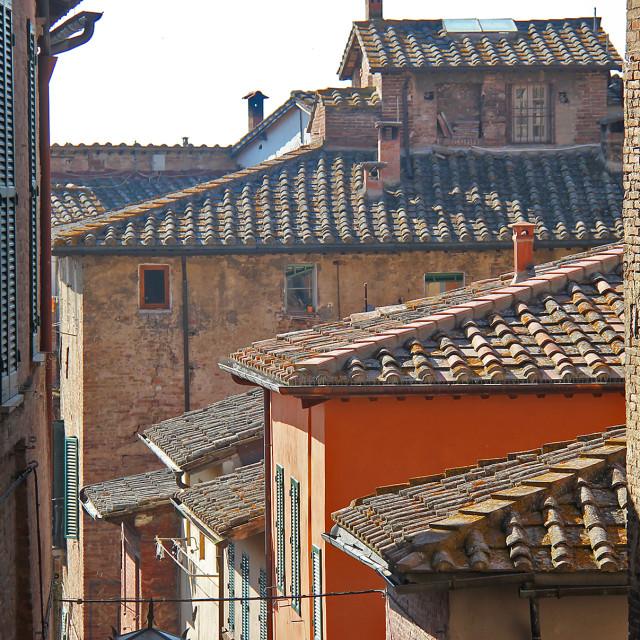 """Rooftops,Siena"" stock image"