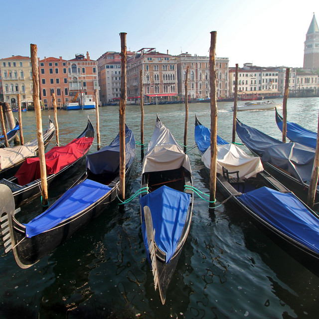 """""""More gondolas, Venice"""" stock image"""