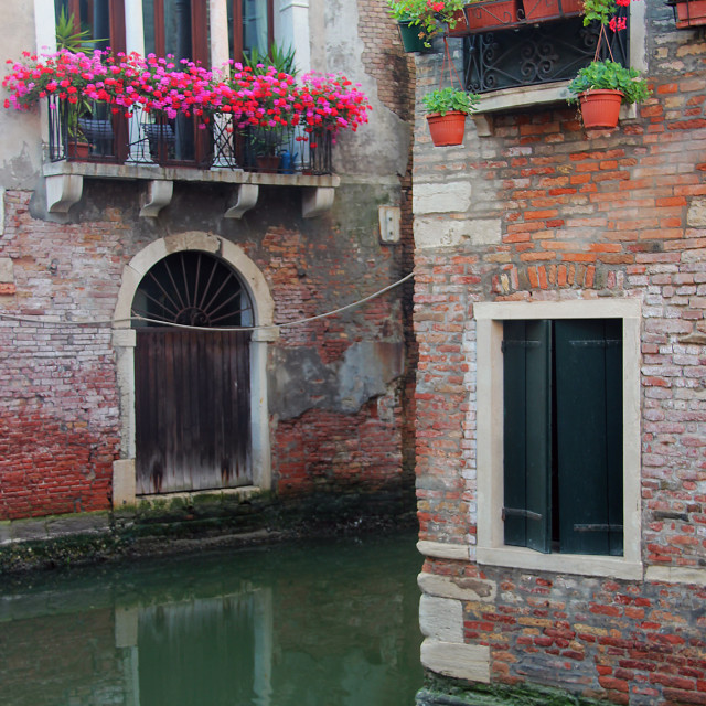 """""""Flowers and canal, Venice"""" stock image"""