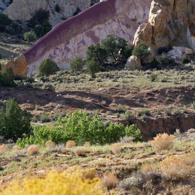 """Purple rock, Cottonwood Canyon Rd., Utah"" stock image"