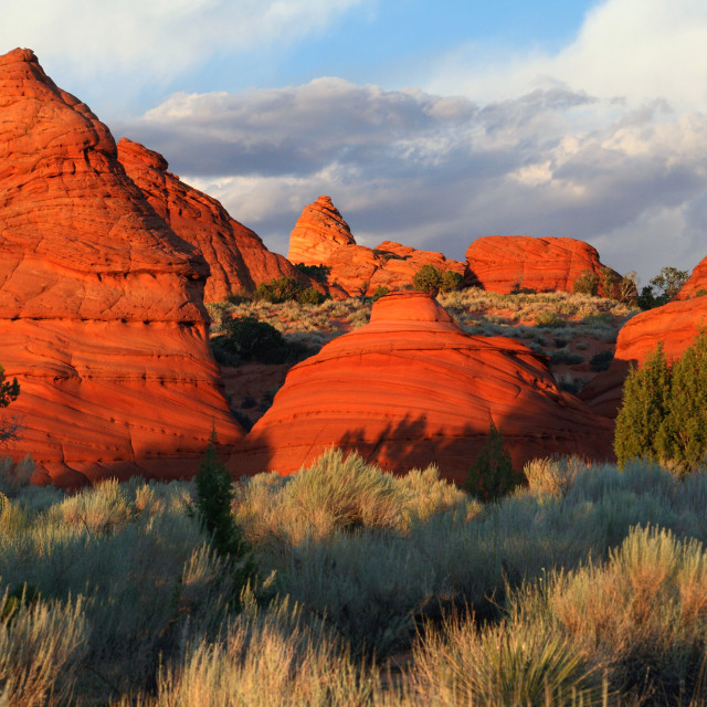 """""""Red rock, Paw Hole, South coyote buttes, Arizona"""" stock image"""