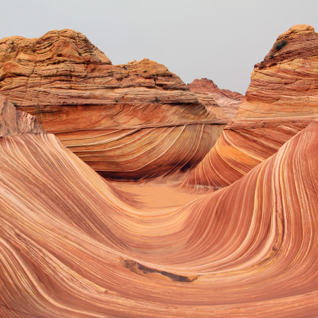 """""""The wave, north coyote Buttes, Arizona"""" stock image"""