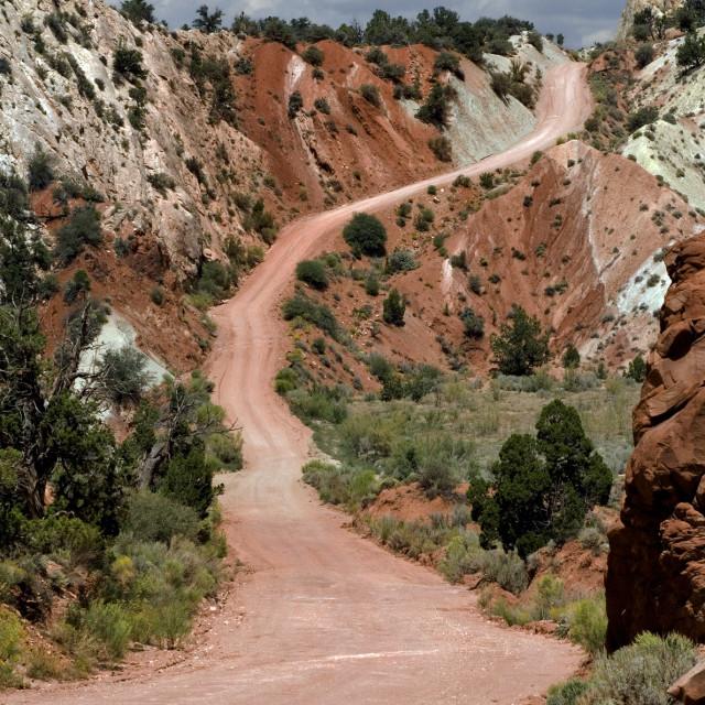 """Cottonwood Canyon Rd., Utah,"" stock image"