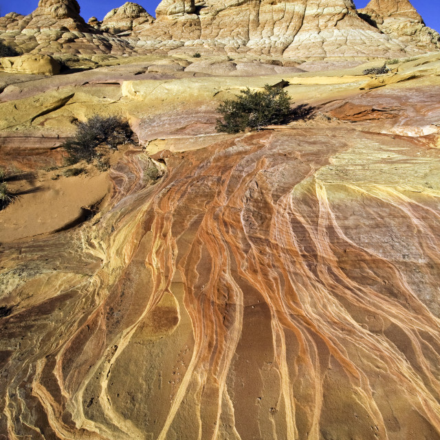 """""""South coyote Buttes, Arizona"""" stock image"""