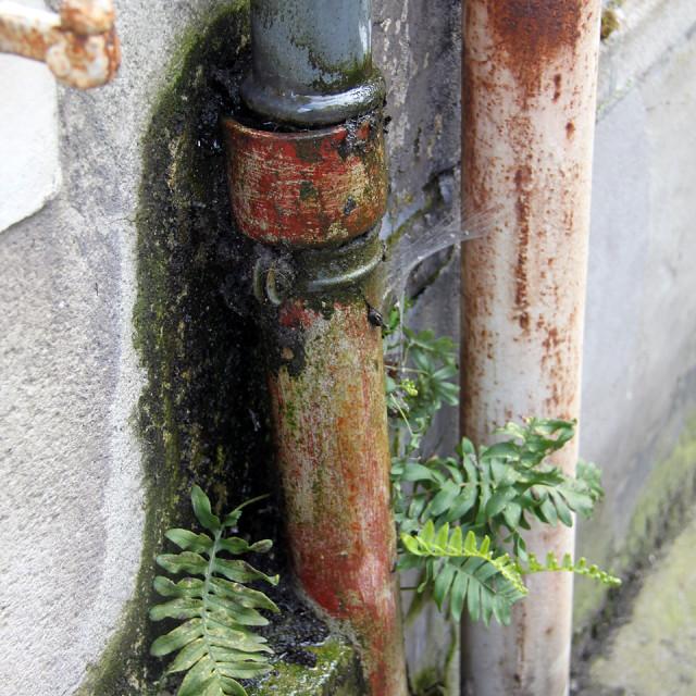 """Bayeux,France"" stock image"