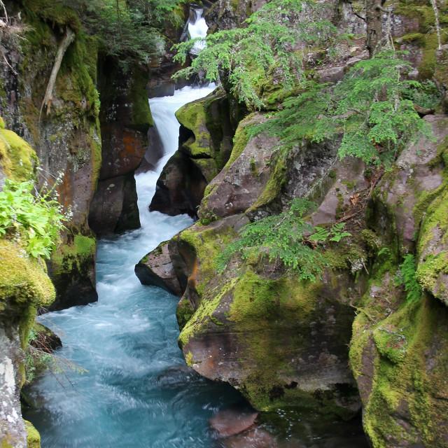"""Avalanche falls, glacier national Park, Montana,"" stock image"