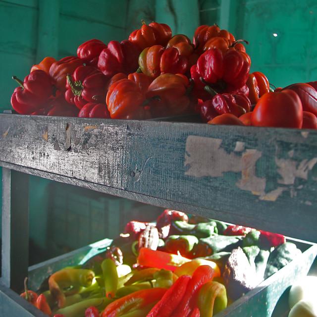 """Produce market, Holbox,Mexico"" stock image"