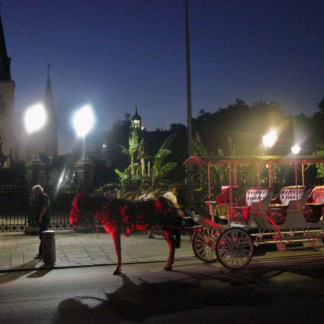 """""""Horse and buggy, Jackson Square"""" stock image"""