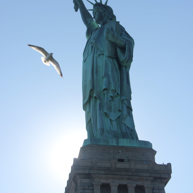"""""""Seagull and Statue of Liberty"""" stock image"""
