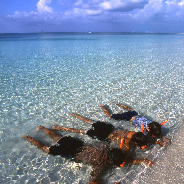 """""""Snorkelers, Turks and Caicos's"""" stock image"""