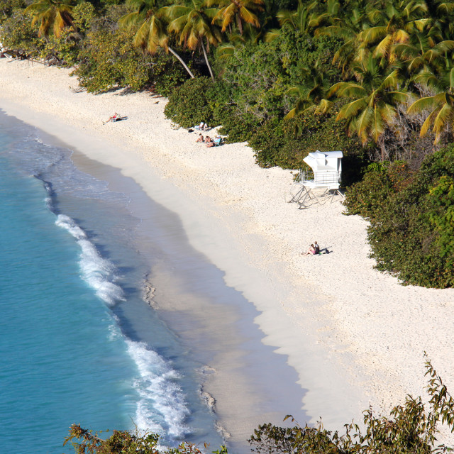 """Trunk Bay, Saint John, US Virgin Islands"" stock image"