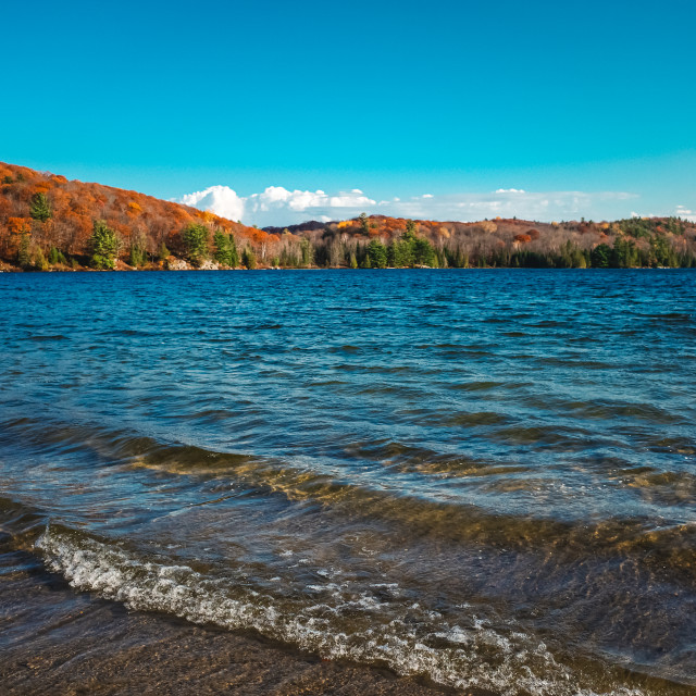 """Colorful forest hills and blue lake in the fall"" stock image"