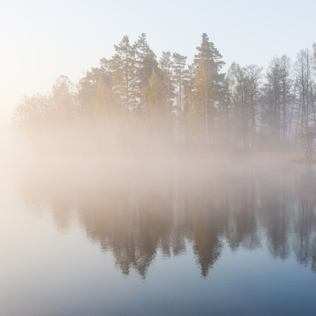 """""""Still and misty lake"""" stock image"""