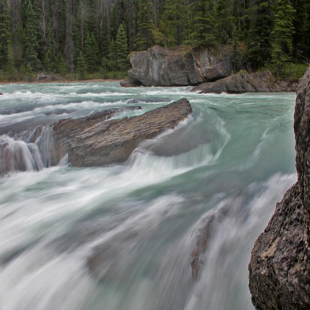 """Stream, Banff national Park"" stock image"