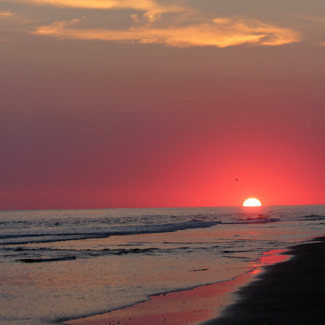 """Sunset, bald head Island, North Carolina"" stock image"