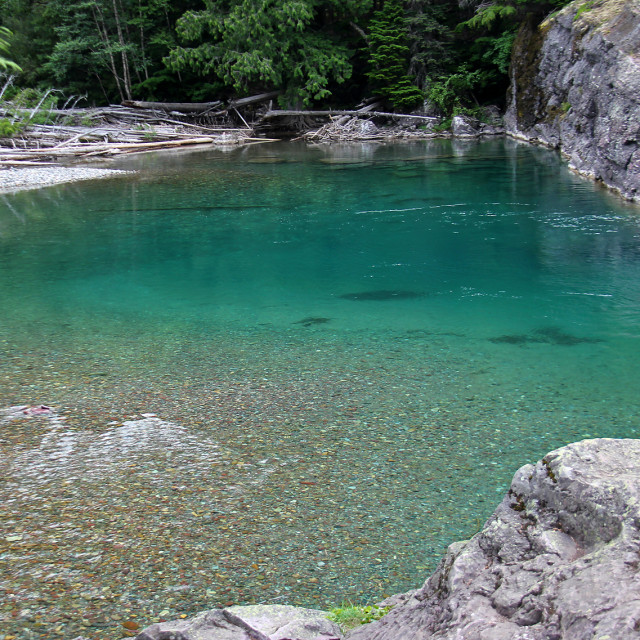 """""""Emerald pool, going to the sun Road, glacier national Park"""" stock image"""