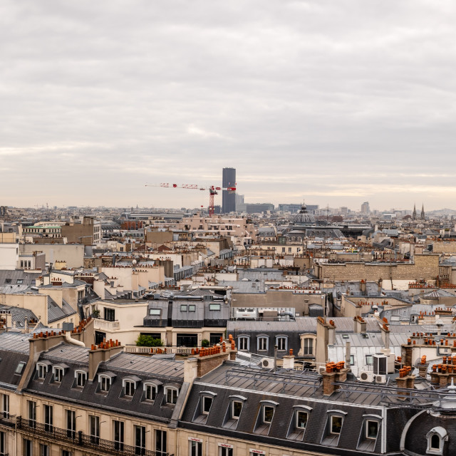 """""""The view of Paris, including the Eiffel Tower"""" stock image"""