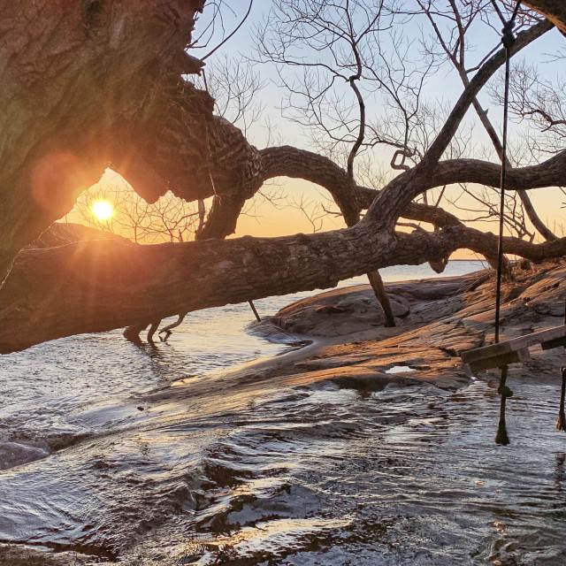 """""""Swinging sunrise, Founders Landing"""" stock image"""