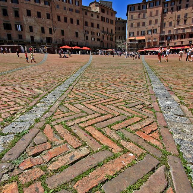 """Piazza, Siena"" stock image"