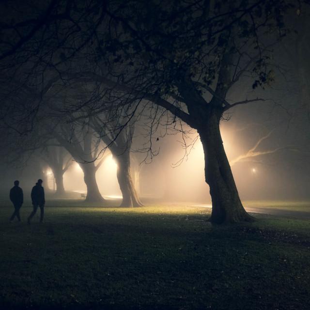 """A foggy Evening walk from Jesus Green, Cambridge UK."" stock image"