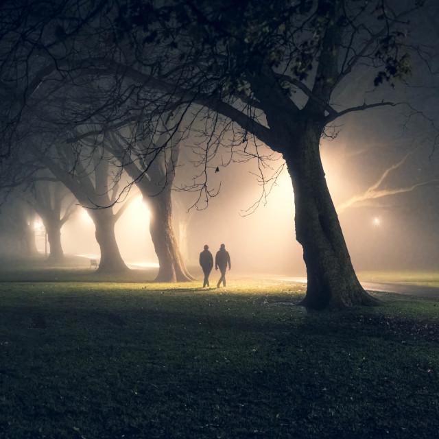 """A foggy night walk from Jesus Green, Cambridge UK."" stock image"
