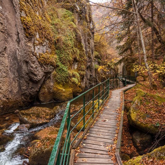 """Bridge for hikers in the gorge of the Devinska River in Bulgaria"" stock image"