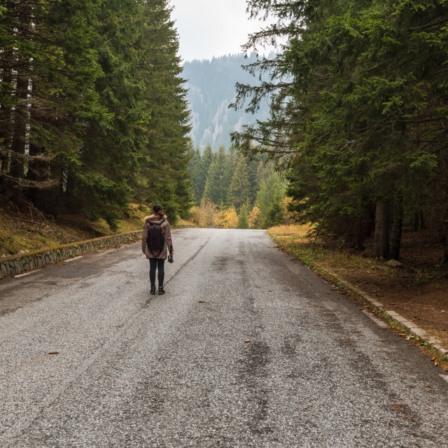 """""""Traveler with backpack walking along the road to the mountains."""" stock image"""
