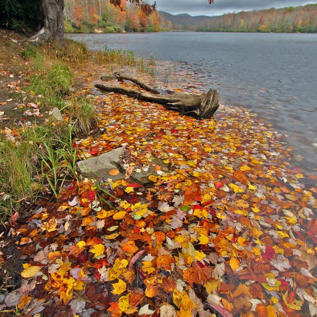 """""""Price lake, Blue Ridge Parkway, NC"""" stock image"""