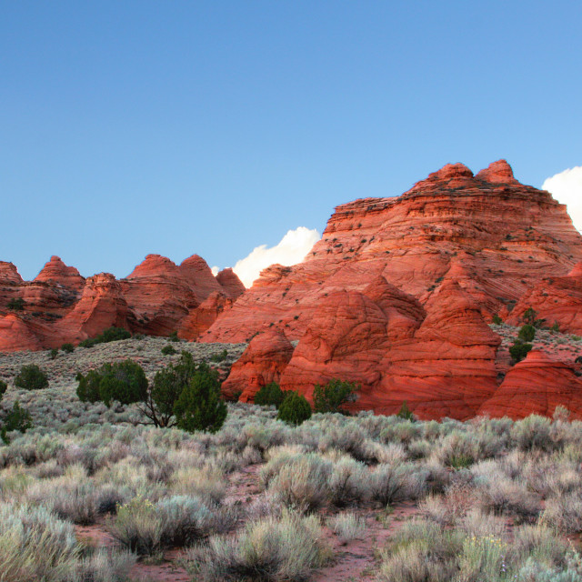 """""""Paw Hole, South Coyote Buttes, Arizona"""" stock image"""