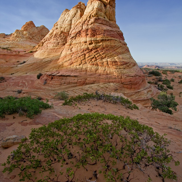"""""""South coyote Butte, Arizona,"""" stock image"""