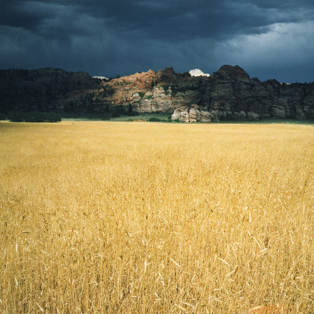 """Kolob Canyon Rd., Zion national Park, Utah"" stock image"