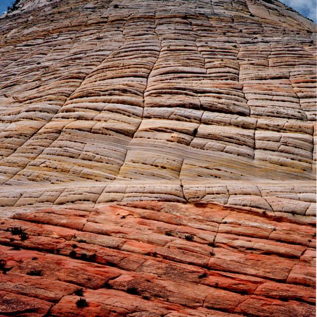 """Checkerboard Mesa, Zion national Park, Utah"" stock image"