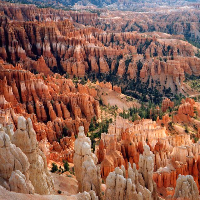 """Bryce Canyon hoodoos"" stock image"