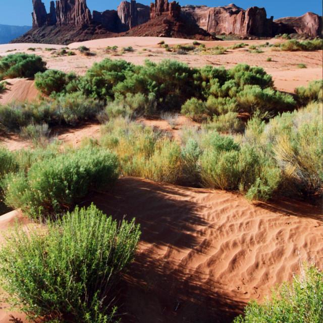 """The totem, monument valley, Arizona"" stock image"