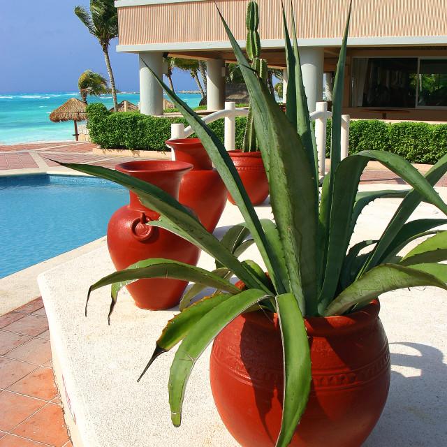 """Hotel pool, Playa Adventura's,Mexico"" stock image"