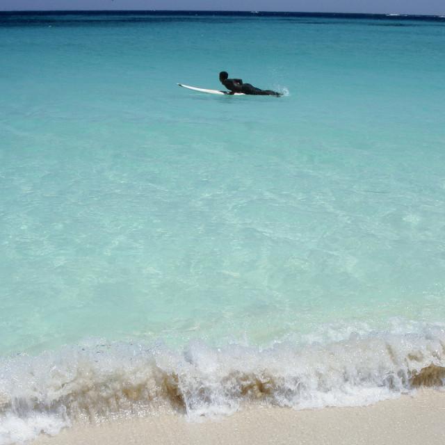 """Surfer, Anguilla"" stock image"