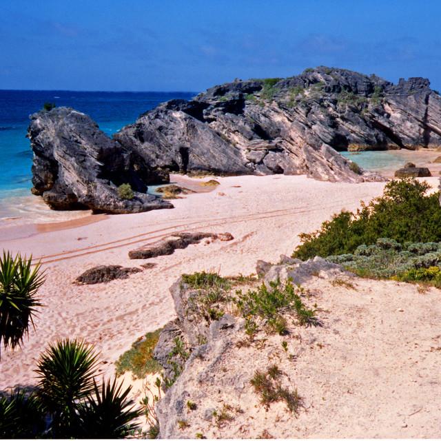 """Jobson's Cove,Bermuda"" stock image"