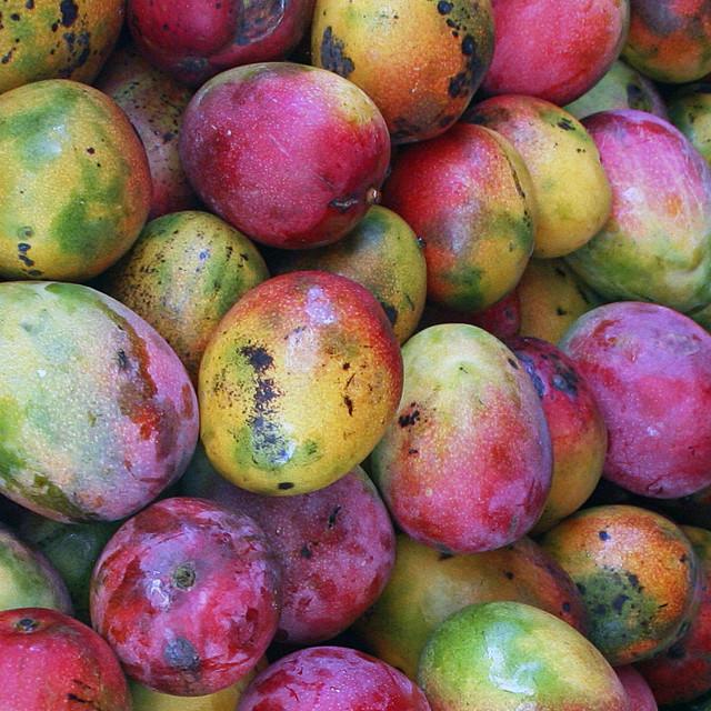"""""""Mangoes,, Nassau market, Bahamas"""" stock image"""